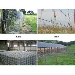 牛栏网围栏