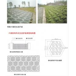 生态护坡网