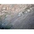 山体绿化网